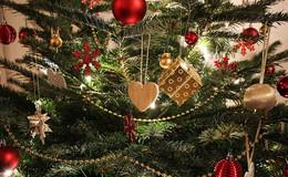 Raus mit dem Weihnachtsbaum - Wie wird die Tanne richtig entsorgt?