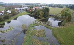 Biberbau wird entfernt - Hochwasser befürchtet