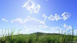 Typischer Schaukelsommer: zum Wochenende hin fast 30 Grad