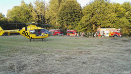 Gegen Baum geprallt: Feuerwehr befreit eigenen Kameraden (22) aus Autowrack