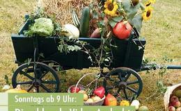 Erntedank-Video-Andacht der Evangelischen Kirche von Kurhessen-Waldeck
