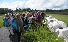 Schüler der Eichbergschule säen Hafer in den Ober-Mooser Teich
