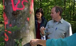 Vogelsberger Grüne besichtigen Zustand des Waldes