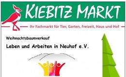 Kiebitz Markt: Weihnachtsbaumverkauf am Samstag für Leben und Arbeiten