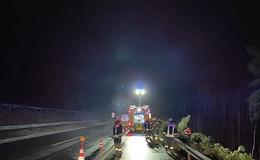 Bilanz der Sturmeinsätze der Feuerwehr: Bauzäune und  Bäume umgestürzt