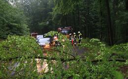 Mehrere Unwettereinsätze: Straßen überflutet, Baum auf Straße