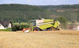 Getreideernte in Waldhessen: Erträge bei der Wintergerste zufriedenstellend