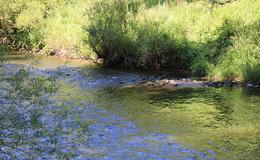 Mittlere Niedrigwasserstände im Landkreis an einigen Gewässern bereits erreicht
