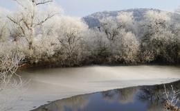 Winterliches Fuldatal: Mit Raureif verzauberte Wälder, Bäume und Sträucher
