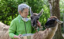 Heimattiergarten und Wildpark sitzen auf heißen Kohlen: Sind bereit