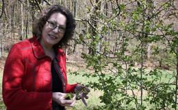 Naturheilverein geht neue Wege: Gesundheitsfördernden Schätzen auf der Spur