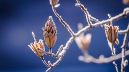Meteorologen ziehen Bilanz: Kältester April in Deutschland seit 40 Jahren