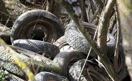 Umwelt-Sauerei an der Fulda: Illegale Reifenentsorgung in der Natur