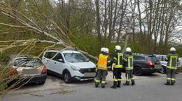 Sturmtief Eugen über Osthessen: Baum stürzt auf Park & Ride-Parkplatz