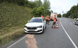 Insekt fliegt in die kurze Hose: Autofahrer rasiert Straßenschild