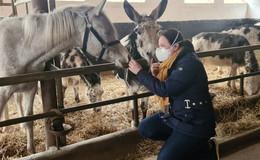 Harte Zeiten für Zirkus Baldoni: Seit über einem Jahr warten Artisten auf Arbeit