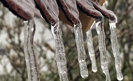 Vom Eisregen verwandelt: alles mit dickem Glaspanzer überzogen