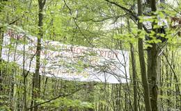 Vorerst keine Rodungsarbeiten für A 49-Neubau - Umweltaktivisten beraten