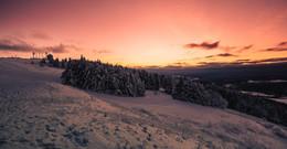 Winterliche Fotogalerie: Schnee-Impressionen in allen Facetten