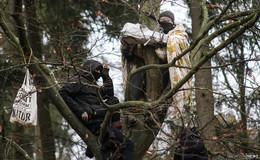 Dannenröder Forst-Chaoten: Steuerzahler bleiben auf 31 Millionen Euro sitzen
