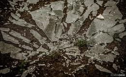 Unbekannte vergraben Scherben in Weitsprunganlage einer Grundschule