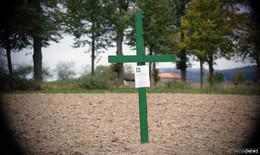Eine Mahnung an die Gesellschaft: Grüne Kreuze auf den Feldern