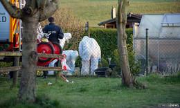 Mit dem Hammer erschlagen: 37-Jähriger wegen Mord aus Heimtücke angeklagt