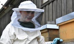 Bienenstock statt Fußballtraining: Max Hilb (11) und sein ungewöhnliches Hobby