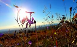 20 Grad, blauer Himmel und Sonne satt: Traumwetter in Osthessen