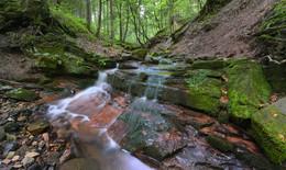 370.000 Euro Förderung für Gewässerschutz: Biodiversität erhalten