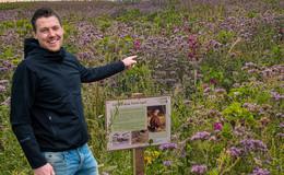 Blühflächenpatenschaft: Wertvoller Beitrag zum Insekten- und Umweltschutz