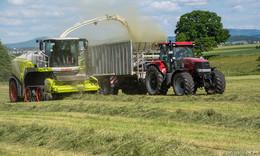Ernte in Gefahr? - Warmer Frühling bereitet Landwirten Sorgen
