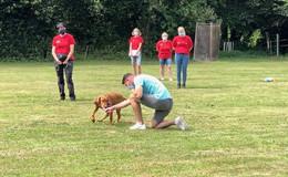 Der Rettungshund: Freund und Helfer für Menschen in allen Notlagen
