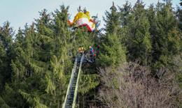 Schwierige Rettung: Paraglider (32) hängt in 15 Metern Höhe in Baumkrone