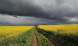 Deutscher Wetterdienst warnt vor schweren Gewittern ab dem Nachmittag