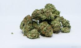 Größere Menge Marihuana und Amphetamine sichergestellt