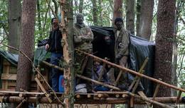 Dannenröder Forst: Aktivistin versucht, sich mit Sekundenkleber an Baum zu heften