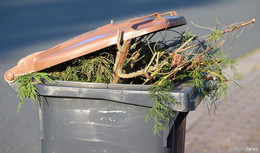 SDP zur Müllgebührenerhöhung: Weder Erfolg, noch Grund zur Freude
