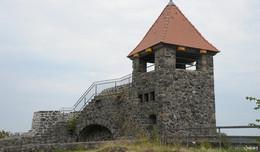 Neue Wohnungen für Turmschwalben