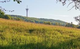 Zum Naturpark ernannt: Sanfter Tourismus und viel Liebe zur Natur im Knüll
