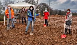 Für die Landesgartenschau: Frauenclub von Soroptimist pflanzt Obstbäume