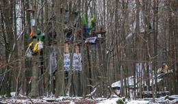 Autobahngegner errichten Strukturen und Blockaden im Maulbacher Wald