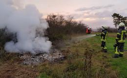 Feuer am Waldrand schnell unter Kontrolle - Altholz in Brand geraten