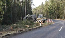 Darum werden die Bäume auf der Strecke Neuhof-Giesel großflächig gerodet