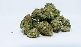 1,7 Kilogramm Marihuana aufgefunden: Mann lagert Drogen bei seiner Oma (86)