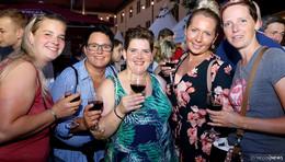 Bestes Wetter und gute Laune beim Weinfest mit Großlangheimer Musikanten