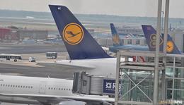 Wegen Coronavirus: Lufthansa streicht China-Flüge