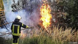 Waldbrandgefahr: Besucher sollten sich an Spielregeln halten