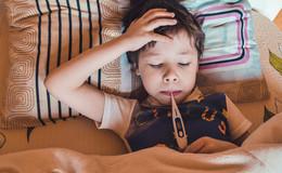Warum es im gesamten Landkreis keinen einzigen Grippefall gibt