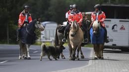 DRK-Reiterstaffel am Sonntag im ZDF-Fernsehgarten zu Gast